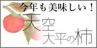 柿の直売/ファーム柿谷